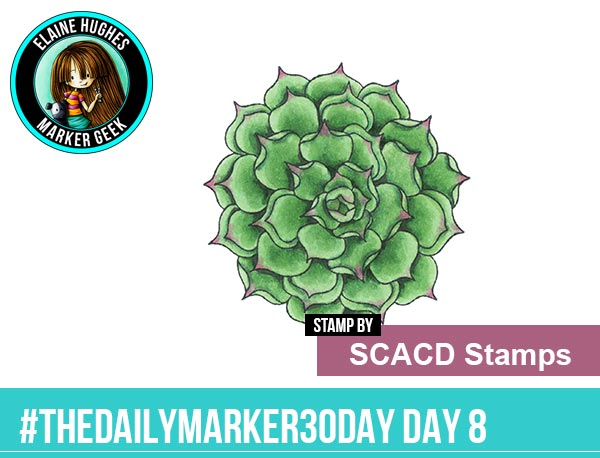 The Daily Marker 30 Day Colouring Challenge: Day 8 SCACD Stamps Echeverria Succulent Outline - www.markergeek.com