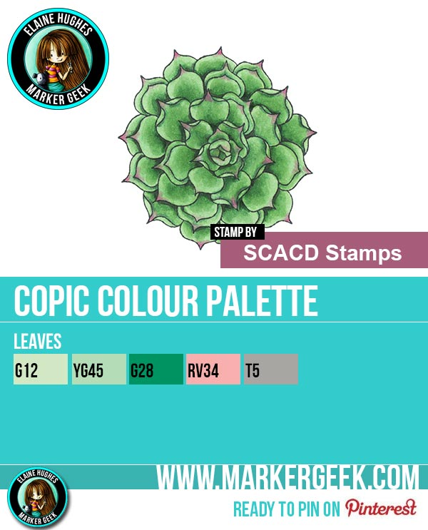 The Daily Marker 30 Day Colouring Challenge: Day 8 SCACD Stamps Echeverria Succulent Outline Copic Marker Colour Palette - www.markergeek.com