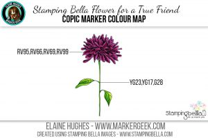 Stamping Bella Flower for a True Friend #thedailymarker30day Click through for Copic Colour Maps and videos!