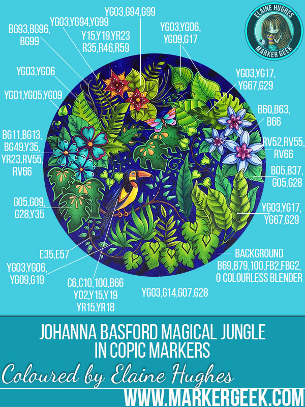 johanna basford magical jungle colouring book review colouring click through to read the post - Johanna Basford Coloring Book